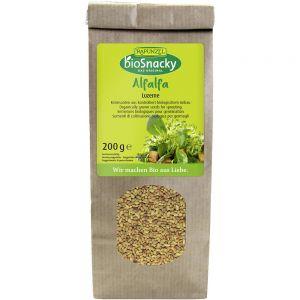 Seminte de lucerna bio pentru germinat Rapunzel BioSnacky
